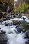 breitachklamm, bavaria, bayern, alpen, alpes, klamm, wasser, fluss, stream, rapid, autumn, colours, wild , Alps , Dave Derbis