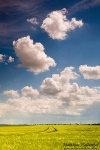 clouds, blue, sky, fields, line , East Germany , Matthias Haltenhof