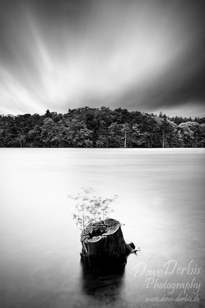 wind, storm, tree stump, lake, stormy, high wind, striking, rare, beauty, surreal , East Germany , Dave Derbis