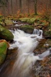 ilse, ilsetal, sachsen-anhalt, ilsenburg, herbst, autumn, fall, stream, creek , Harz National Park , Dave Derbis
