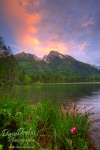 alpen, alps, hintersee, sunset, lake, pond, nationalpark, berchtesgaden, flooded, berg, schneebedeckt, blau, himmel, blue sky, mountain, stones, forest, wald, bayern , Alps (Germany, Autria, Switzerland) , Dave Derbis