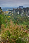 latest,  forest, national park,  autumn, sachsen, saxony, saxon switzerland, germany , East Germany , Dave Derbis