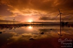 sunset, wind turbine, windkraftrad, windrad, sonnenuntergang, gespiegelt, mirrored, winter , East Germany , Dave Derbis