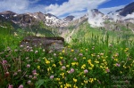 meadow, alpes, mountain, hohe tauern, national park, austria, , Alps (Germany, Austria, Switzerland) , Dave Derbis